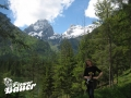 Wald Yoga und Natur